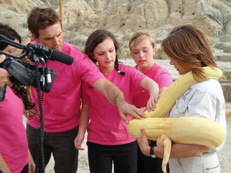 "Web series for Reveille...Producers of ""The Office"" and ""Biggest Loser."" I did Pink teams MU/ Hair"